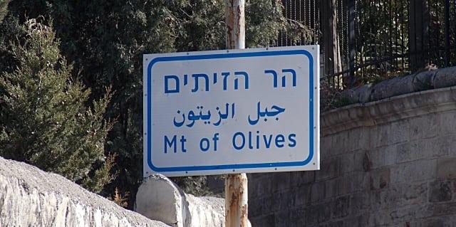 monte das oliveiras - Visita ao Monte das Oliveiras em Jerusalém