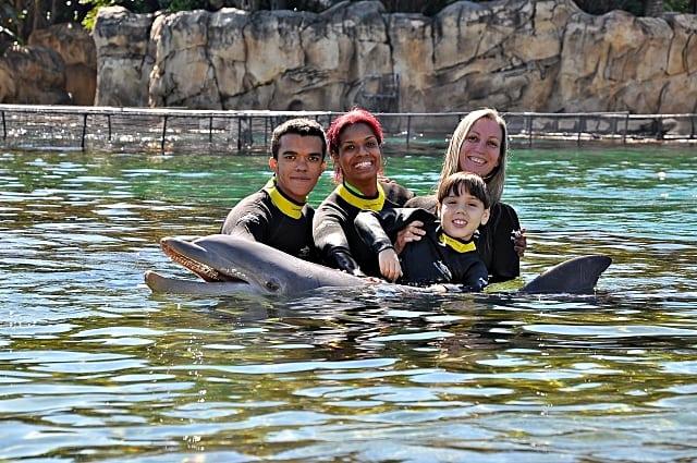 nadar com golfinhos orlando - Dicas para visitar ao Discovery Cove em Orlando