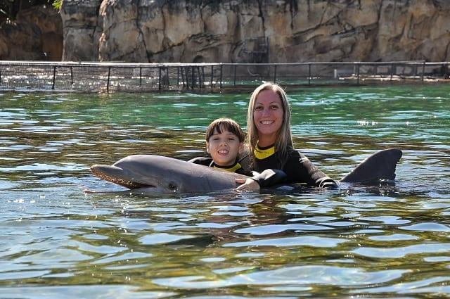 orlando com criança - As atrações do Discovery Cove em Orlando