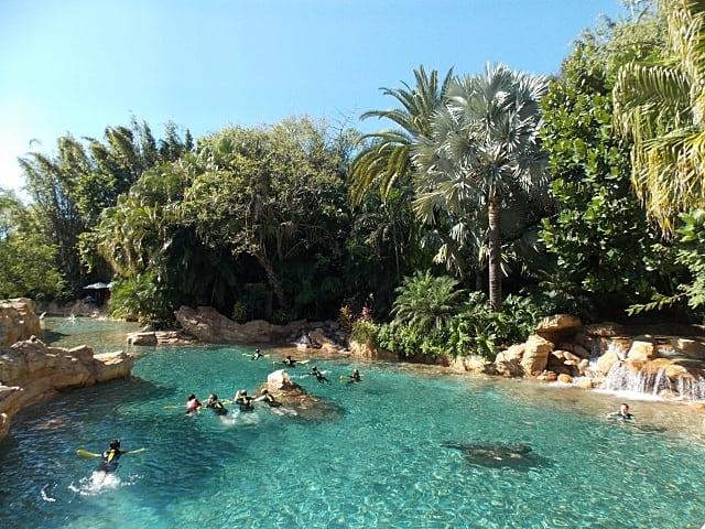 piscinas discovery cove
