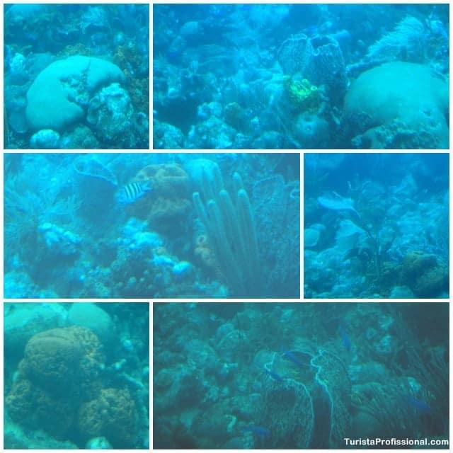 atrações turísticas em Barbados - Passeio de submarino em Barbados