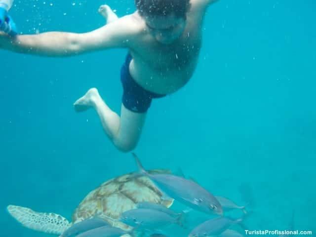 dicas Barbados - 10 ilhas lindas que você precisa conhecer