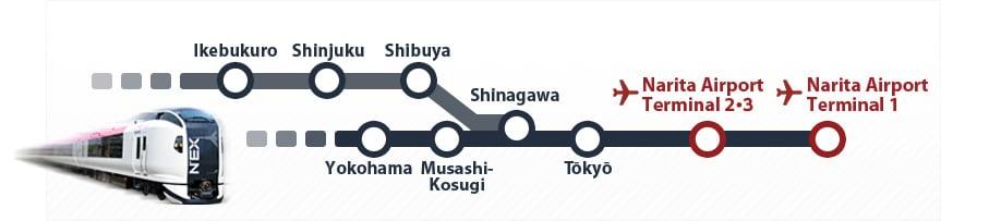 narita airport - Como ir do aeroporto até o centro de Tóquio