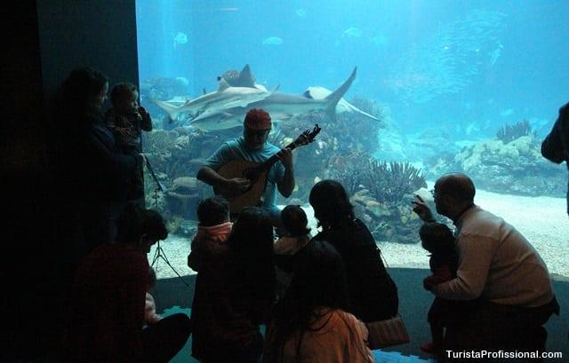 aquário de lisboa