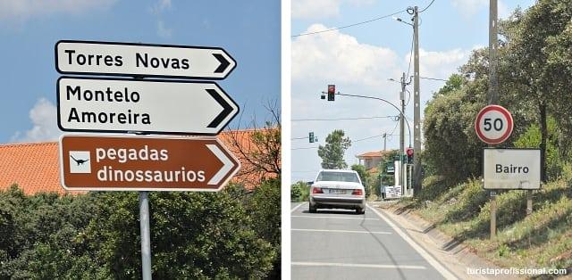como chegar em fatima - Visite as Pegadas de Dinossauros em Portugal (pertinho de Fátima)