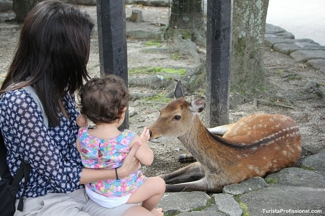 japão com criança