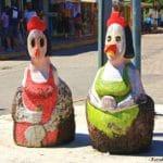 o que ver em porto de galinhas 150x150 - Nova Home