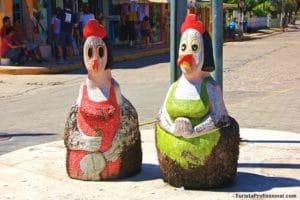 o que ver em Porto de Galinhas