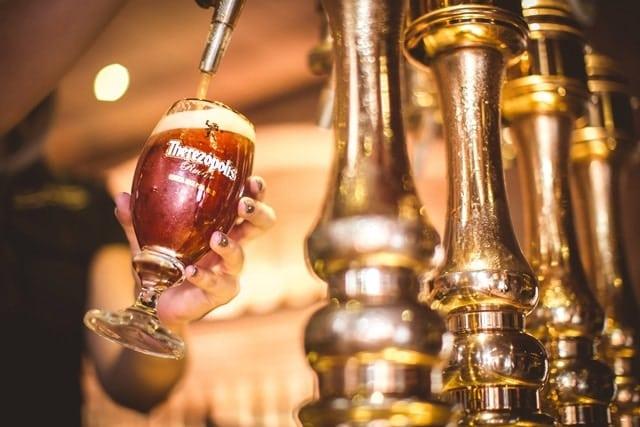 cerveja terezopolis