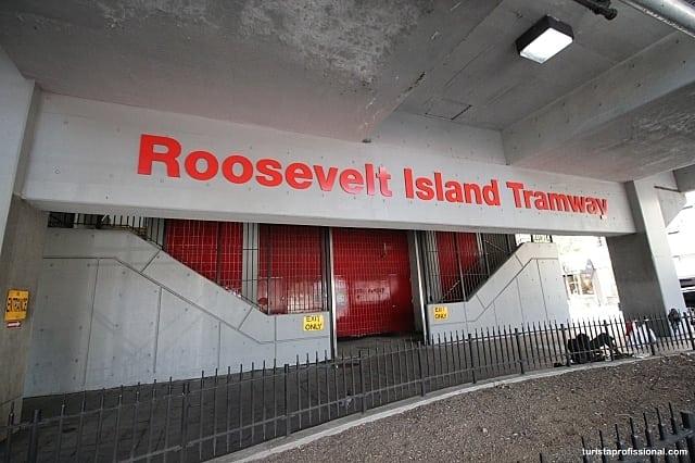 roosevelt-island