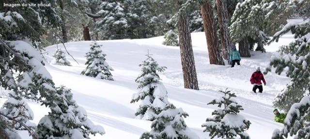 onde ir na california - 10 estações de esqui na Califórnia