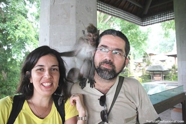 floresta dos macacos - 10 ilhas lindas que você precisa conhecer