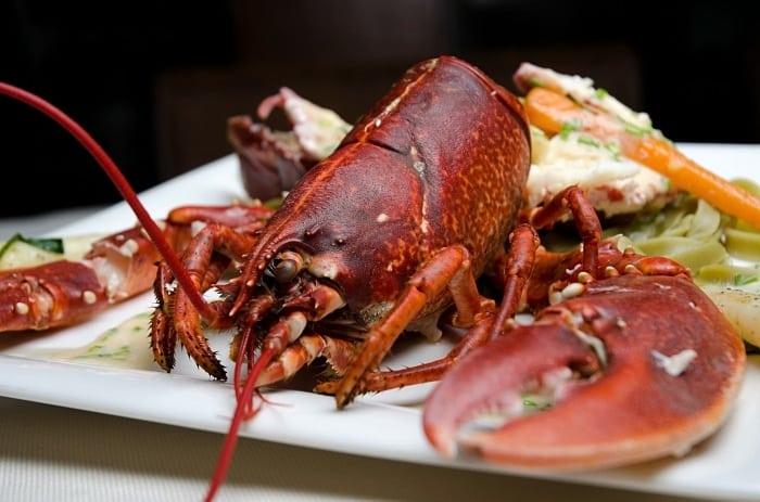 Oosterschelde lobster - Uma deliciosa viagem pela gastronomia holandesa!