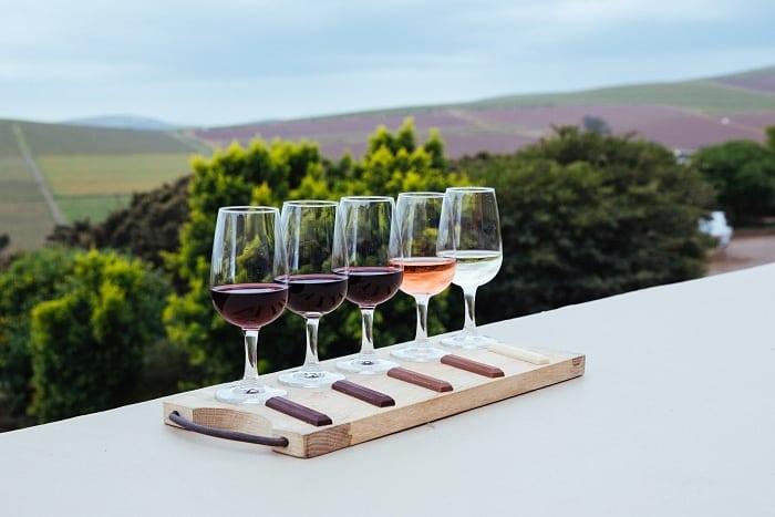 DURBANVILLE degustacao vinhos africa do sul - Rota dos vinhos na África do Sul