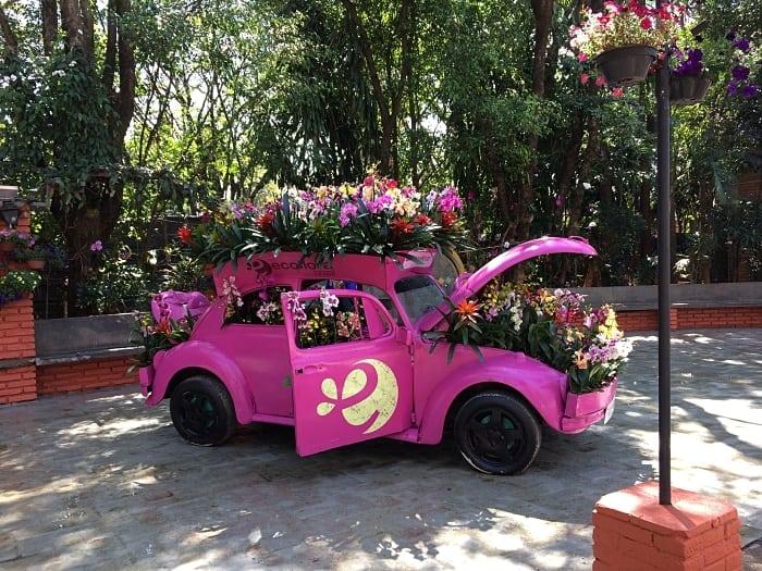 holambra - Holambra, a cidade das flores: dicas para visitar a Expoflora