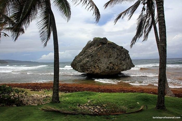 praias de barbados - Praias de Barbados na costa leste: explorando o lado Atlântico do Caribe