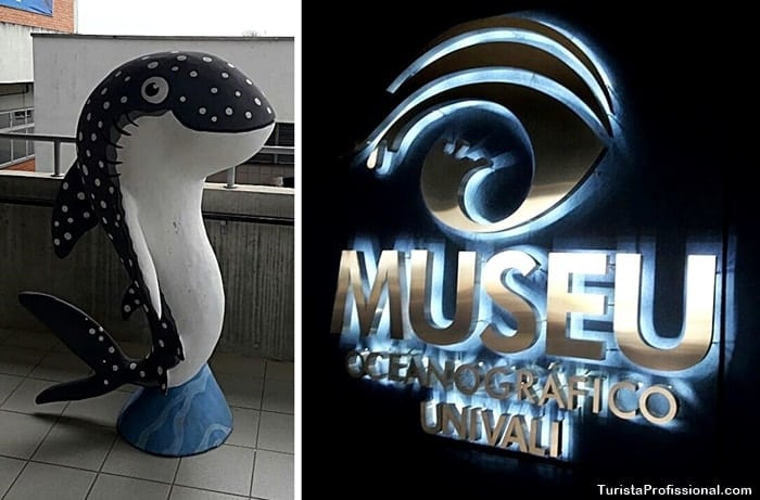 museu univali - Conheça o Museu Oceanográfico Univali, em Piçarras, SC