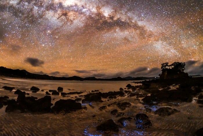 Observacao de Estrelas em Great Barrier Dark Sky - 18 motivos para visitar a Nova Zelândia