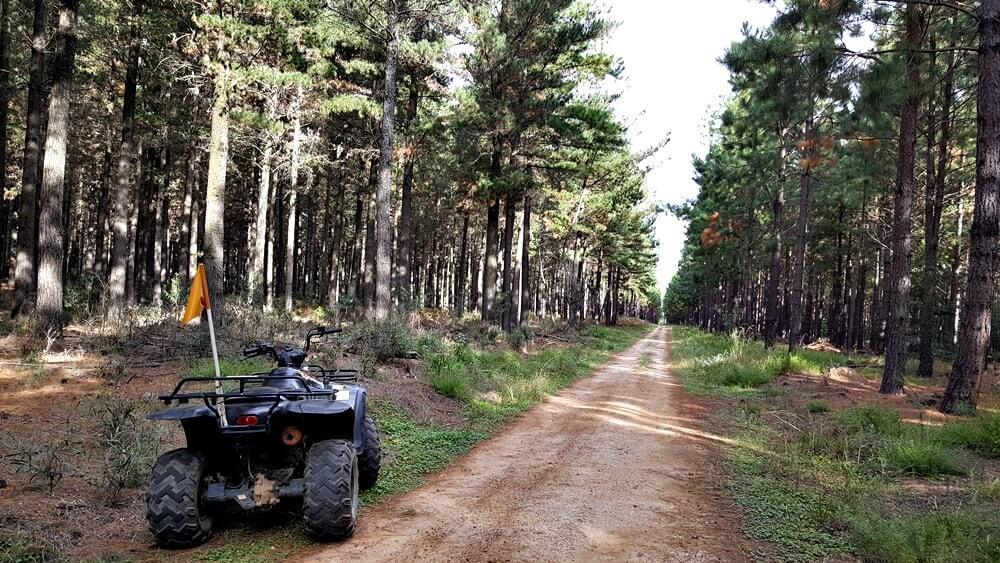 passeio de quadriciclo - Dicas da África do Sul de A a Z