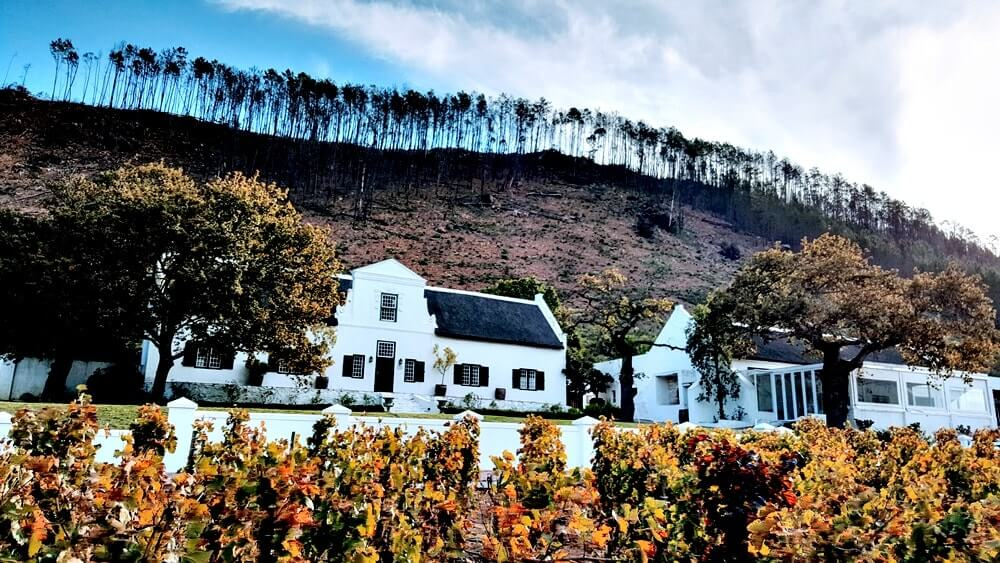 trem do vinho na africa do sul - Dicas da África do Sul de A a Z