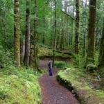 trilhas de um dia na Nova Zelândia
