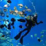 mergulho em Israel