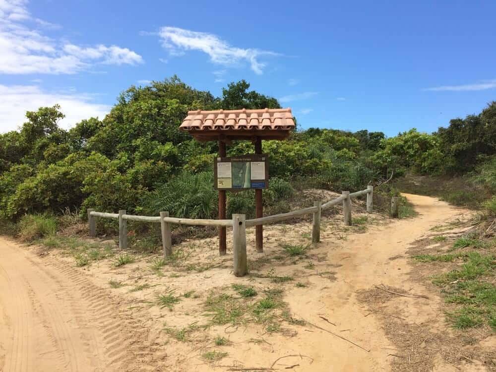 trilhas do parque estadual de itaunas