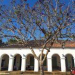 o que ver no Ceará