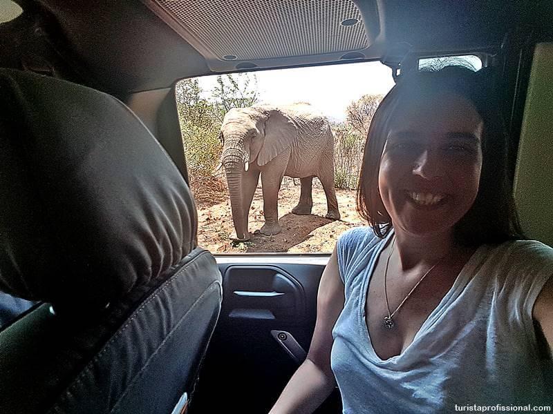safari africa - Safári com crianças na África do Sul