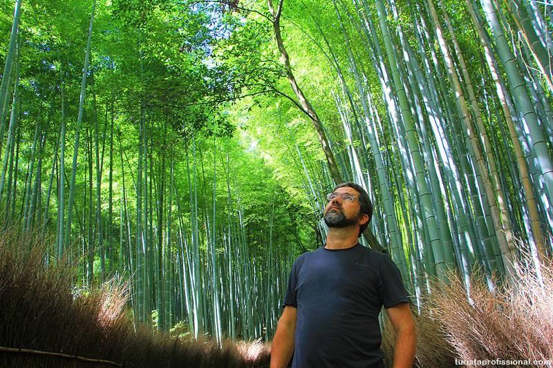 Floresta de bambus de Quioto