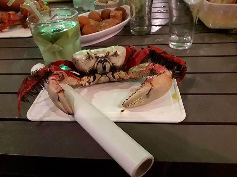 noite do caranguejo crocobeach 1 - Crocobeach na Praia do Futuro, Fortaleza