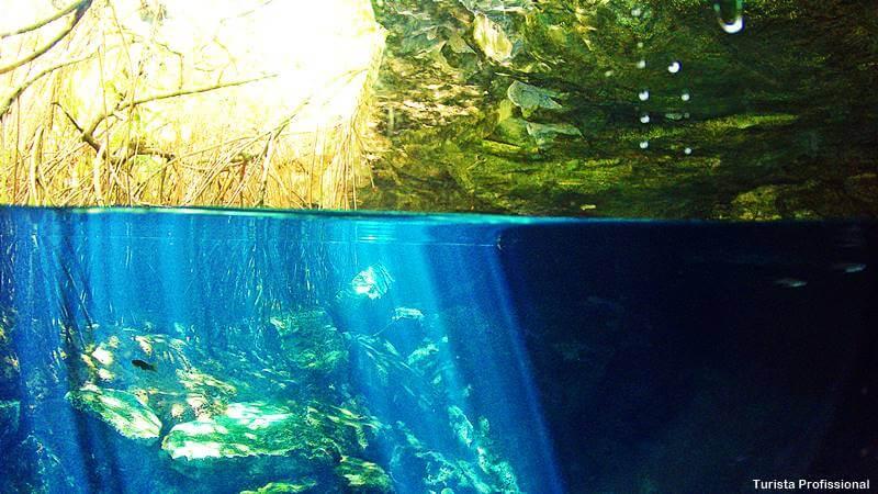 Cenotes em Cancún Cenote Cristalino