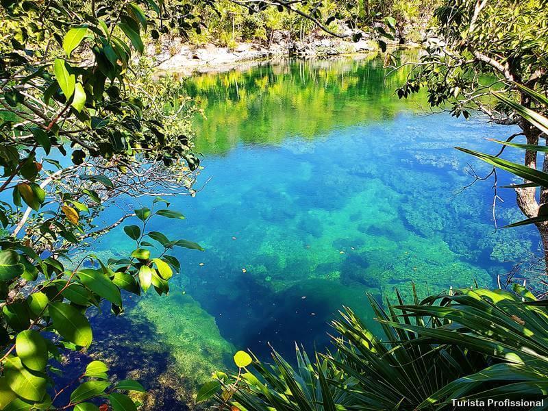 o que e um cenote - O que é Cenote? A melhor atração da Riviera Maya!