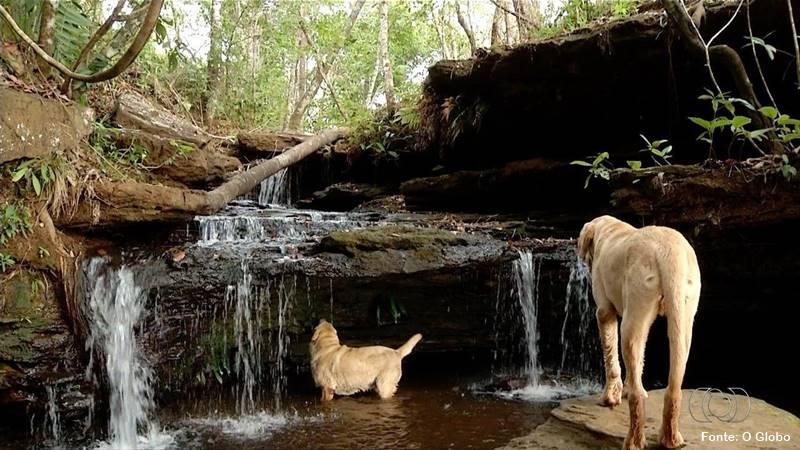 O que fazer no Jalapão Cachoeira das Araras