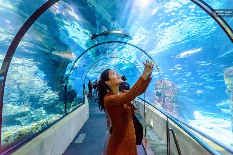 aquario de barcelona - O que fazer em Barcelona: os principais pontos turísticos!