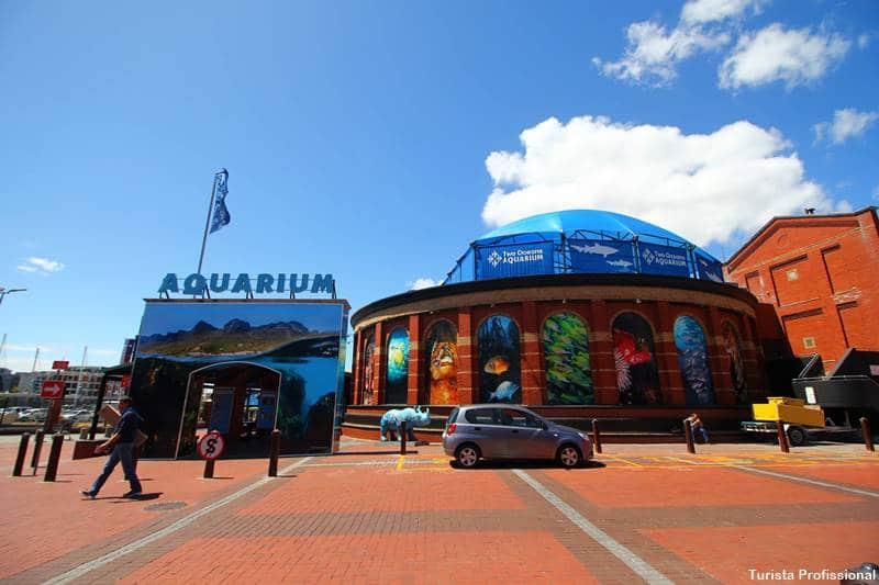 aquario de cape town - O que fazer em Cape Town, África do Sul