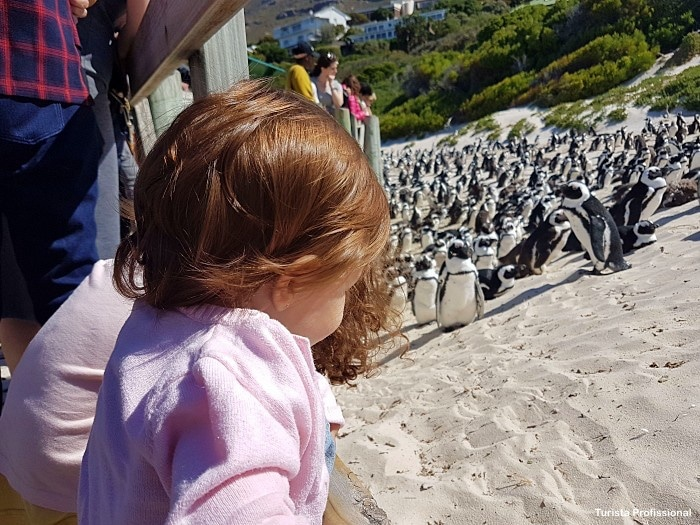 O que fazer em Cape Town com crianças