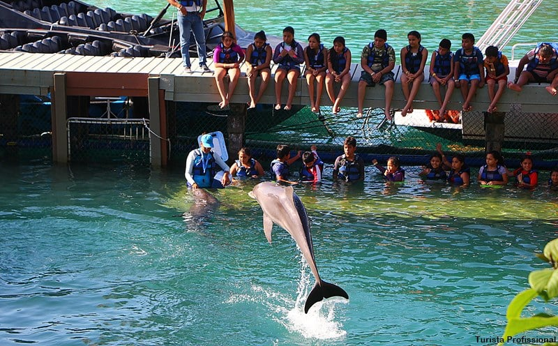 o que fazer no xcaret cancun - Parque Xcaret em Cancún: o que fazer