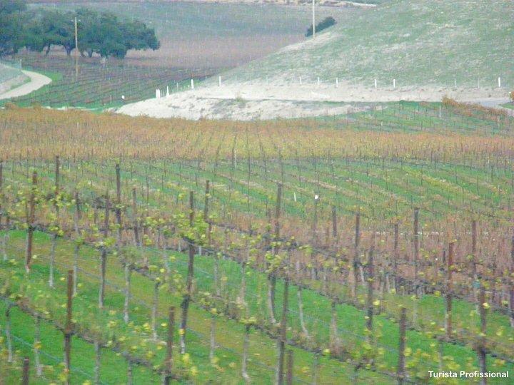 vinocolas perto de Solvang