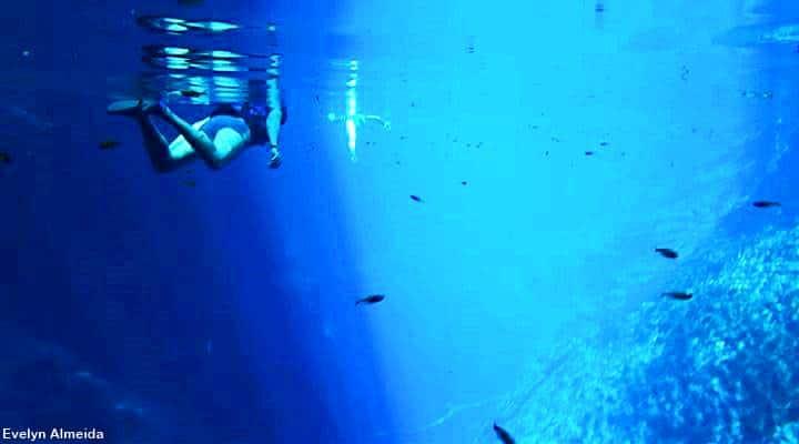 mergulho de snorkel em Bonito