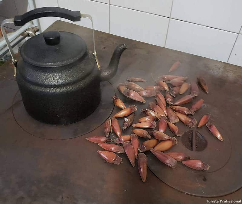 gastronomia do sul do brasil