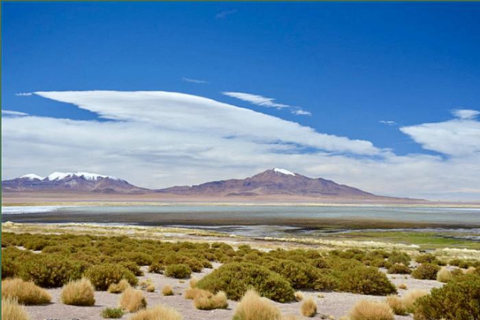 Salar de Tara no Atacama - O que fazer em San Pedro do Atacama: principais pontos turísticos