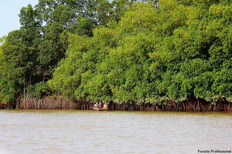 catador de caranguejo 1 - Delta do Parnaíba: passeio de barco e revoada dos guarás