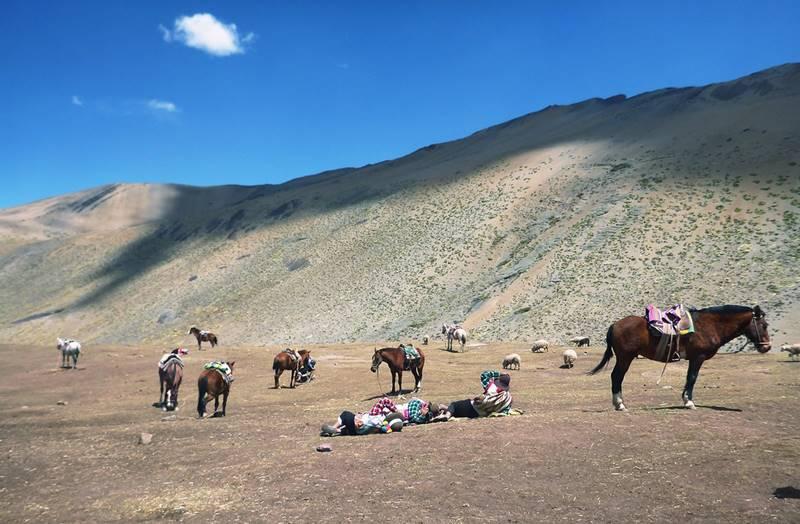 cavalos montanha arco iris peru - Rainbow Mountain, a Montanha Colorida no Peru