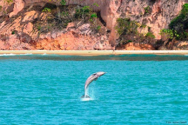 ecoturismo natal rn - 5 melhores ecodestinos para 2020 – aproveite a Black Friday!