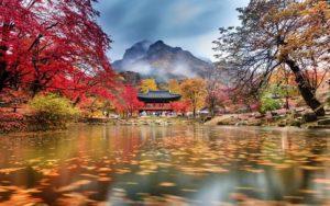 parque nacional Naejangsan na Coreia do Sul