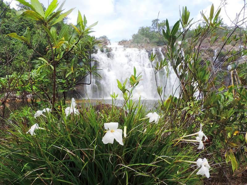Cachoeira Poço Encantado Chapada dos Veadeiros - Chapada dos Veadeiros: cachoeiras