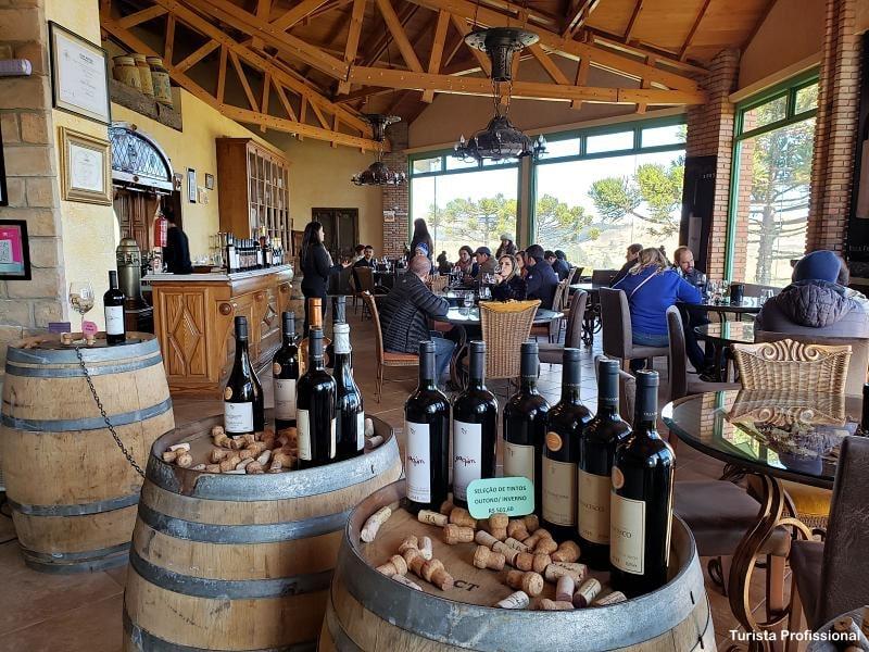 vinicola em santa catarina - Serra de Santa Catarina: principais atrações, dicas e roteiro