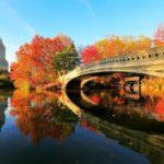 Nova York no outono 150x150 - Nova Home