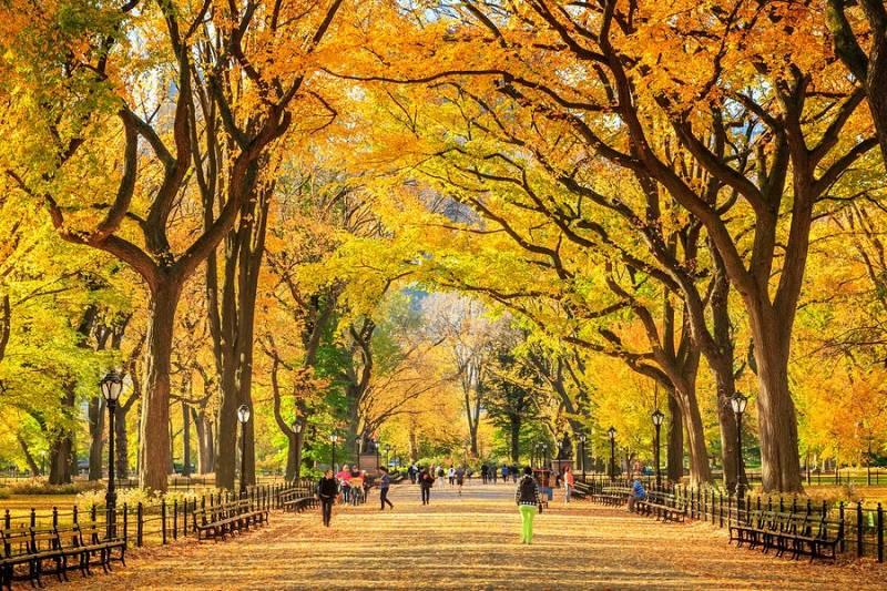 outono em Nova York 1 - Outono em Nova York